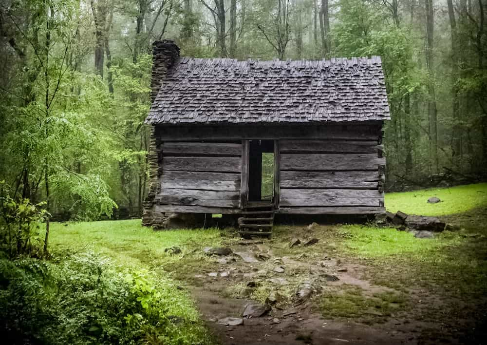 cabin in roaring fork historic district